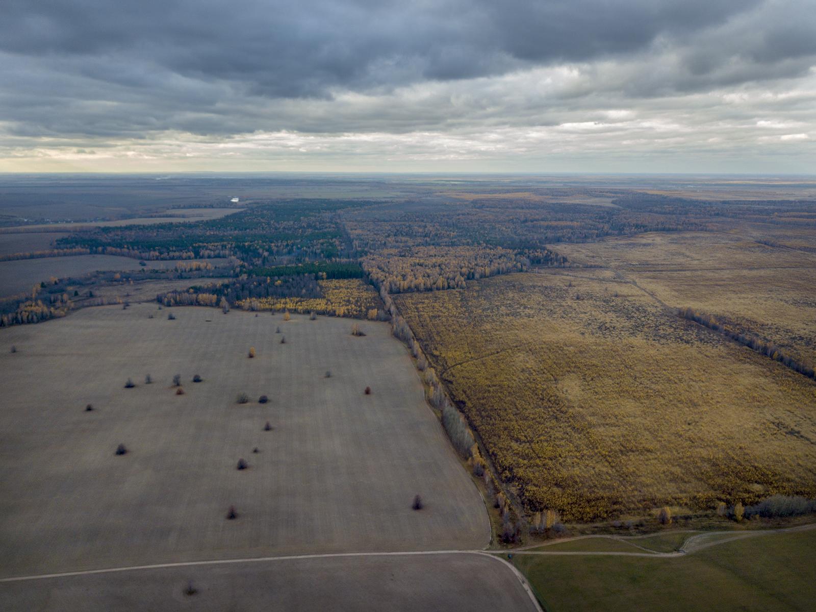 Слева - активно используемые сельхозземли Татарстана, справа - неиспользуемые сельхозземли Марий Эл, зарастающие березовым лесом. Впрочем, бывает и наоборот.