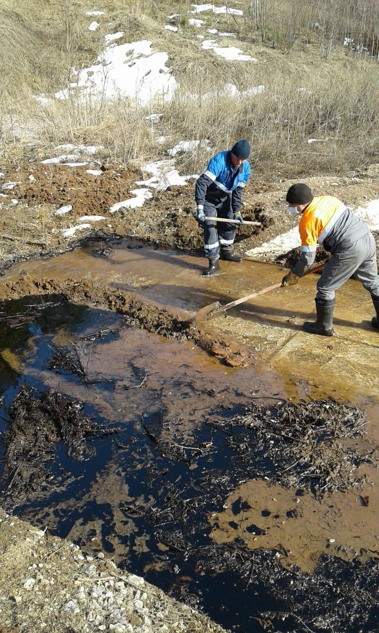 Фото: минэкологии РТ.