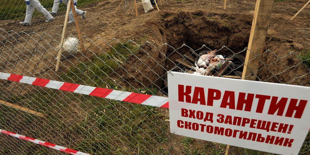 Фото: pravdaurfo.ru.