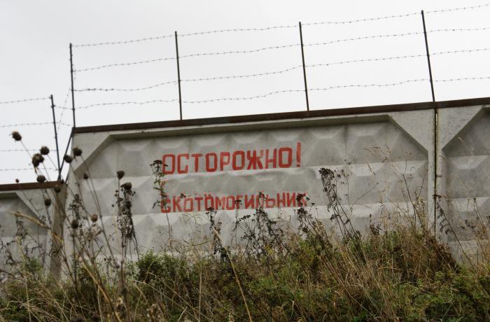 Фото: uryupinka.ru