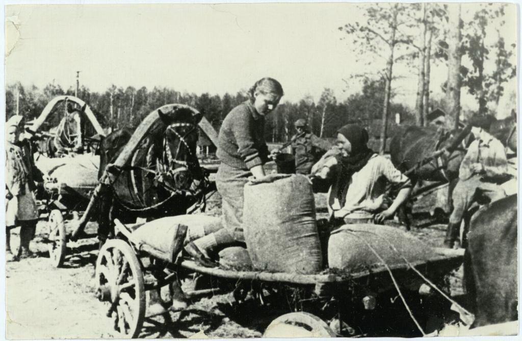 Сдача хлеба государству на ссыпном пункте Высокогорского района ТАССР 1943