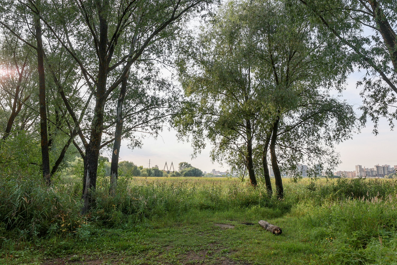 Как отметил заведующий лабораторией инженерных проблем биотехнологий КНИТУ (КХТИ), эколог Сергей Мухачев, со временем в Казани может быть создан единый историко-экологический маршрут.