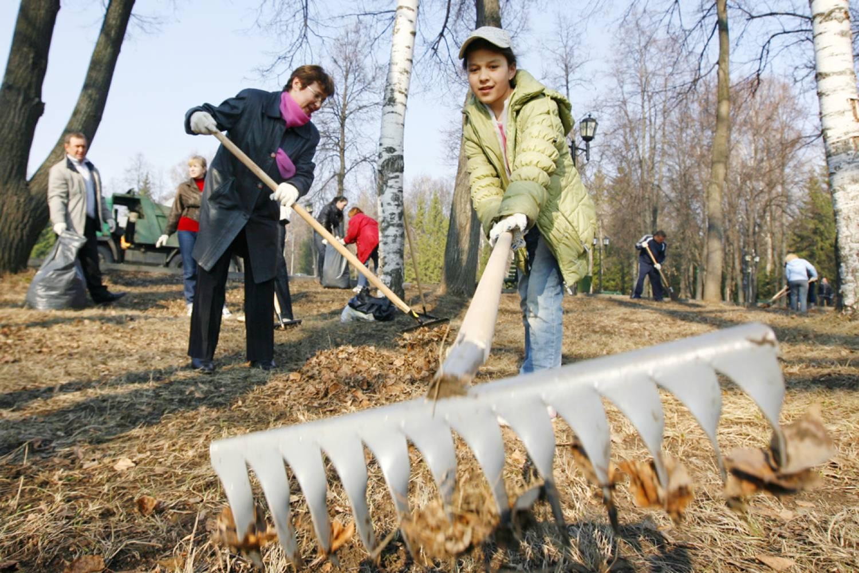 Город Иркутск: климат, экология 15